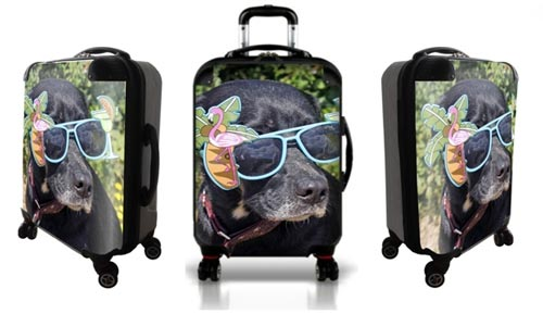 Personalized luggage with cool dog wearing sunglasses
