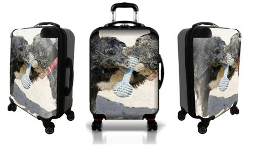 Personalized Travel Gear | Custom Made Luggage | BforBag.com